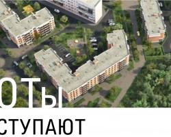 koty-nastupajut-1