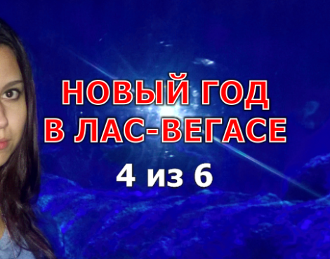 Новый год в Лас-Вегасе часть 4 из 6 от Real Estate Group #regrbiz